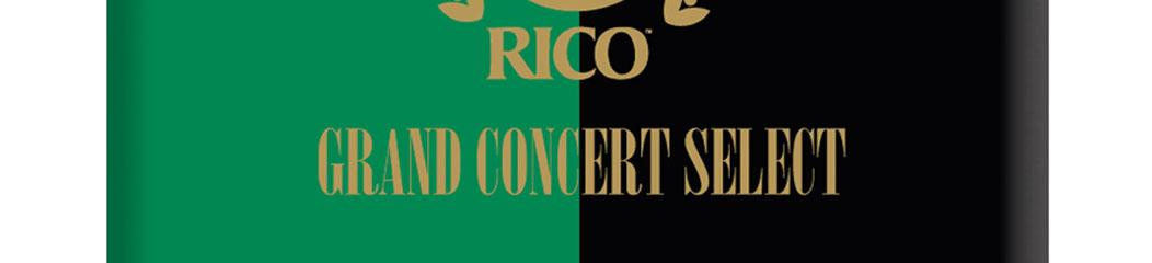 Anche sax ténor Grand Concert Select